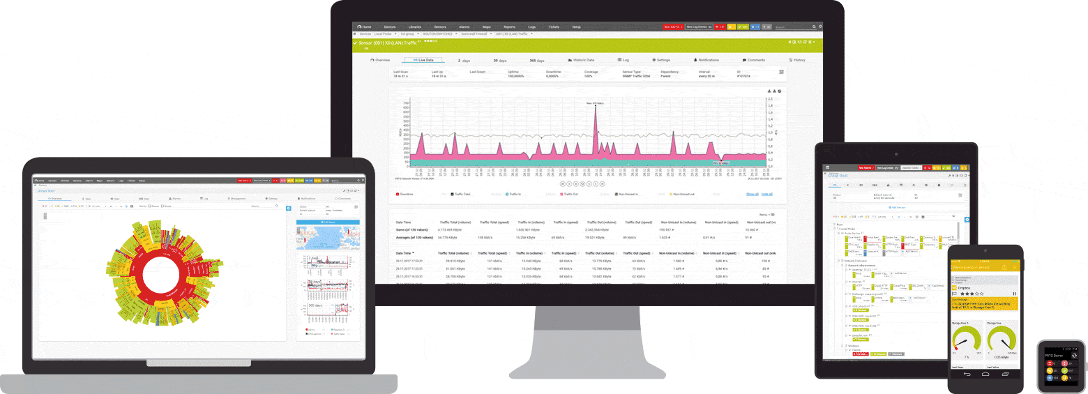 Paessler Router Traffic Grapher server management software