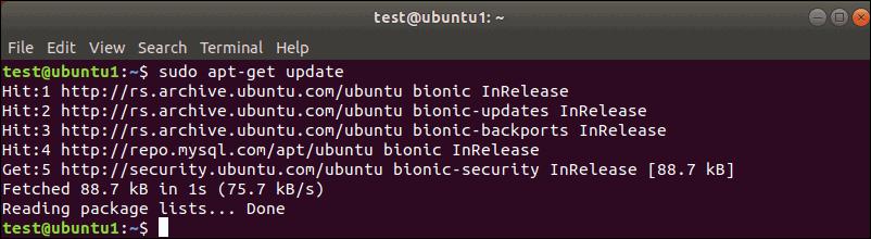 sudo apt-get update output