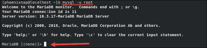 MariaDB shell successfully accessed