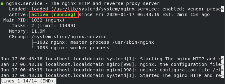 Nginx service is active and running on your system.