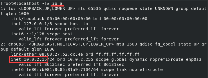 Command for checking your IP address and output with IP number.