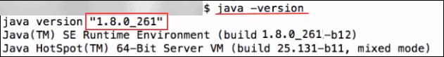 java version 1.8.0_261 installed on macOS