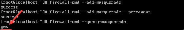 Check the masquerade was added to the runtime instance.
