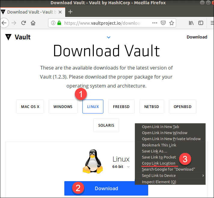 downloading vault for ubuntu linux