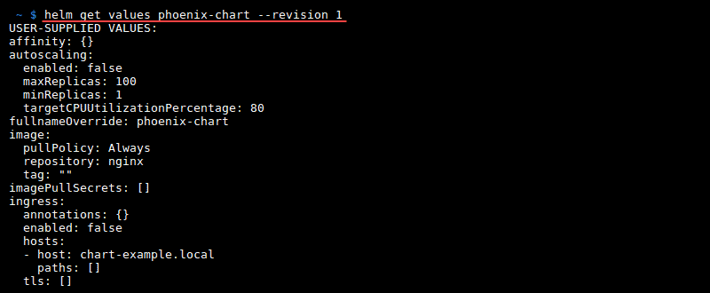 Terminal output of the command helm get values --revision