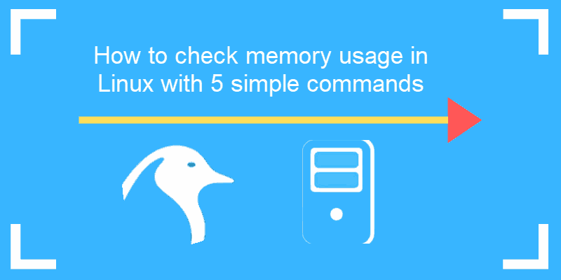 tutorial on how to check memory usage on linux