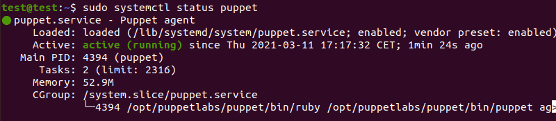 Check the status of the Puppet service
