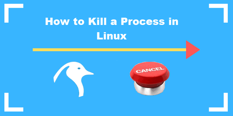 how-to-kill-a-process-in-linux