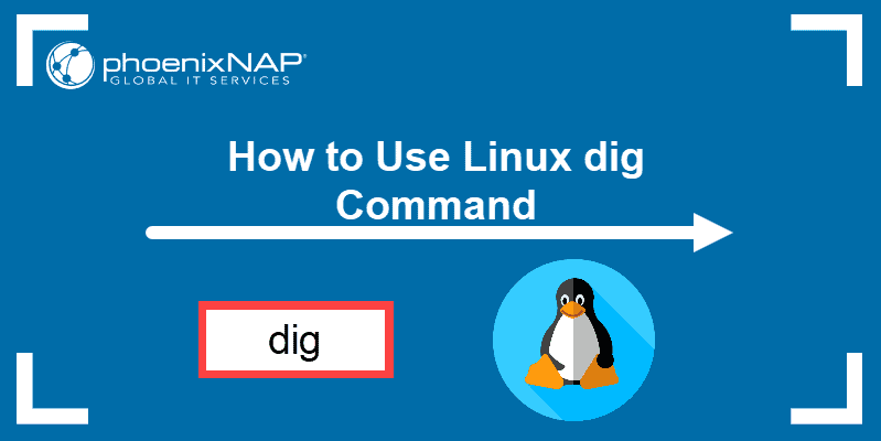 How to use Linux dig command.