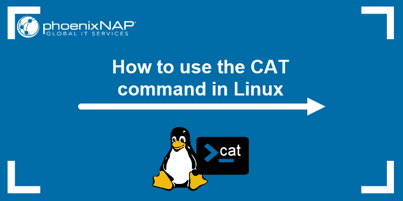 cat command in Linux with examples