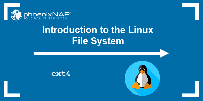 Introduction to the Linux File System