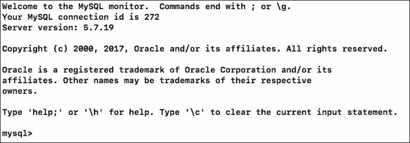 MySQL shell on macOS