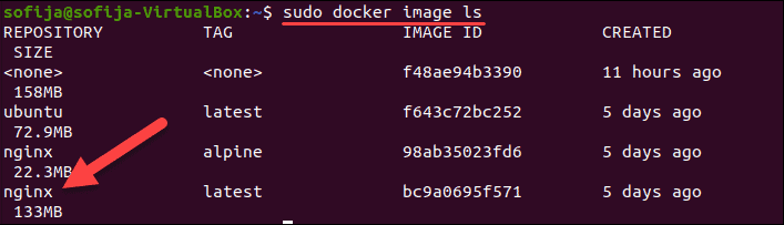 Verify the nginx docker image is among locally listed images.