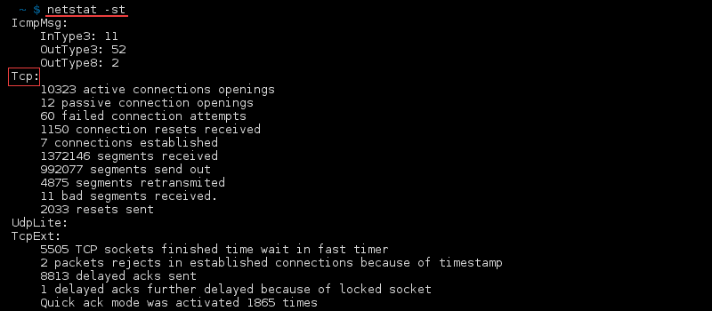 Terminal output of the command netstat -st