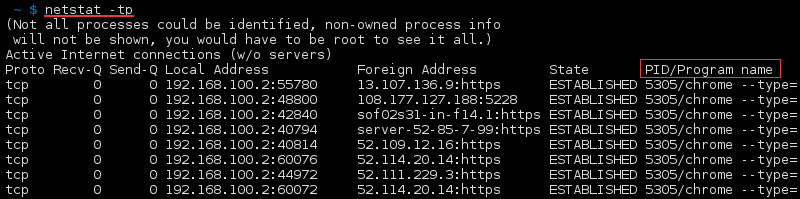 Terminal output of the command netstat -tp