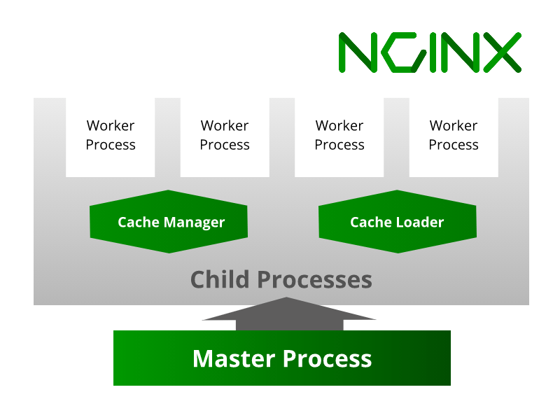 A graphical representation of Nginx architecture