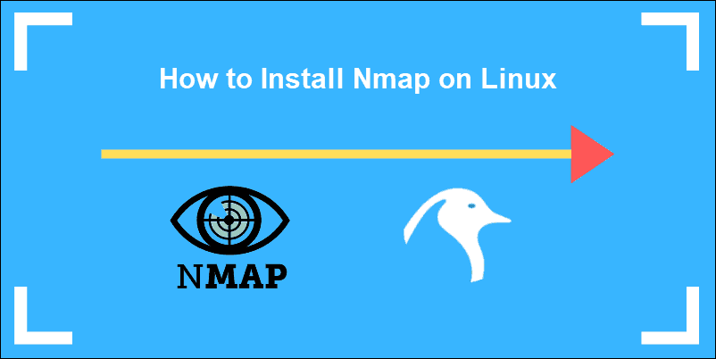 NMap and Linux introductory logo