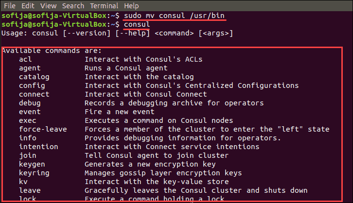 open consul available commands