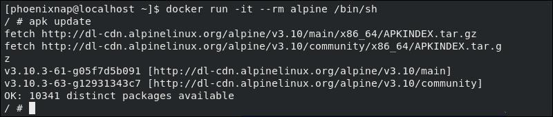 Alpine container successfully run on CentOS 8 docker installation.
