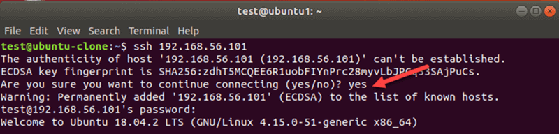 Terminal for SSH connection with yes selected