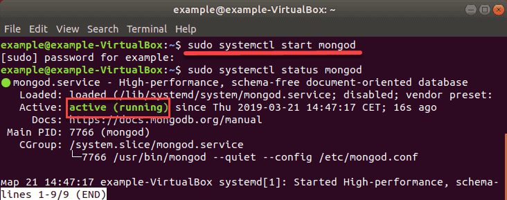 command to start the database service