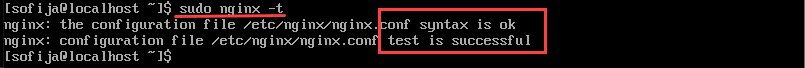 testing nginx configuration with output that the test is sucessful