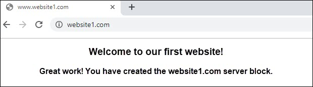 screenshot that says welcome to your first website
