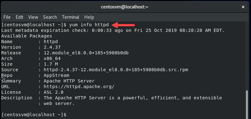 terminal with yum info command