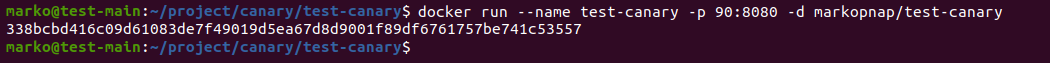 Building the container with the created image using the docker run command