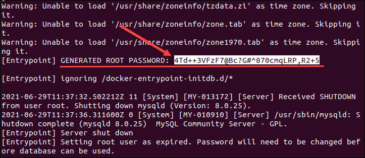 Find generated root password for MySQL Docker container.