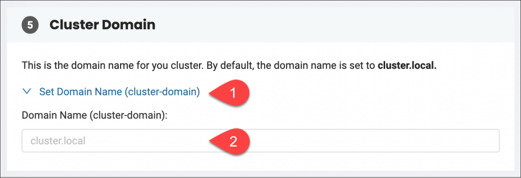 Advanced Configuration Settings - Cluster Domain section