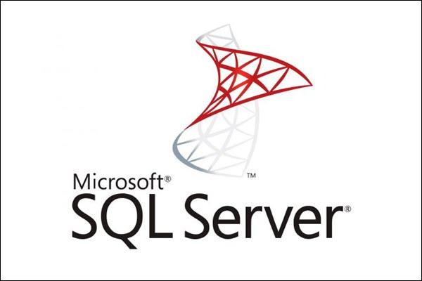 The Microsoft SQL Server database management system.
