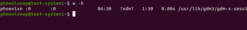 Displaying the wo command output without the header