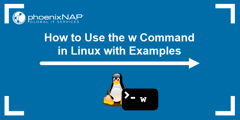 How to use the w command in Linux