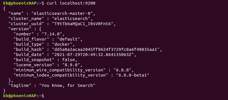 accessing manually deployed elasticsearch application
