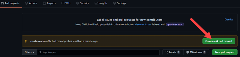 Creating a pull request on GitHub.