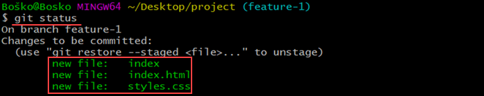 Running git status to see which files are being tracked, ready for commit, or modified.