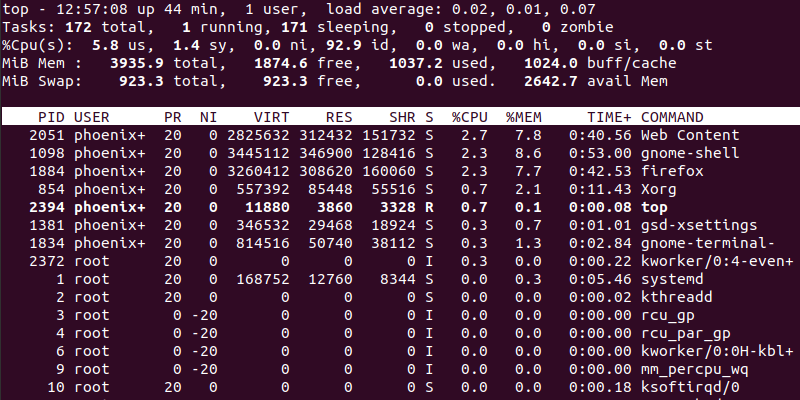 Linux top command output