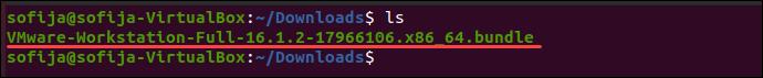 Determine filename downloads VMware Ubuntu.