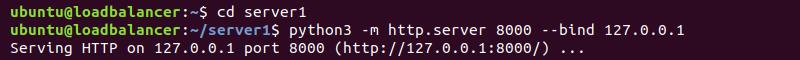 Starting test web server using Python